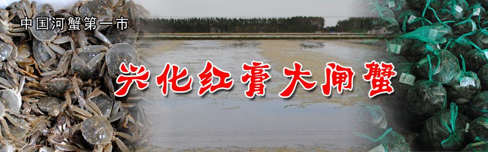【兴城商业】2016我们亏在哪?未来的兴化河蟹应该怎么做?