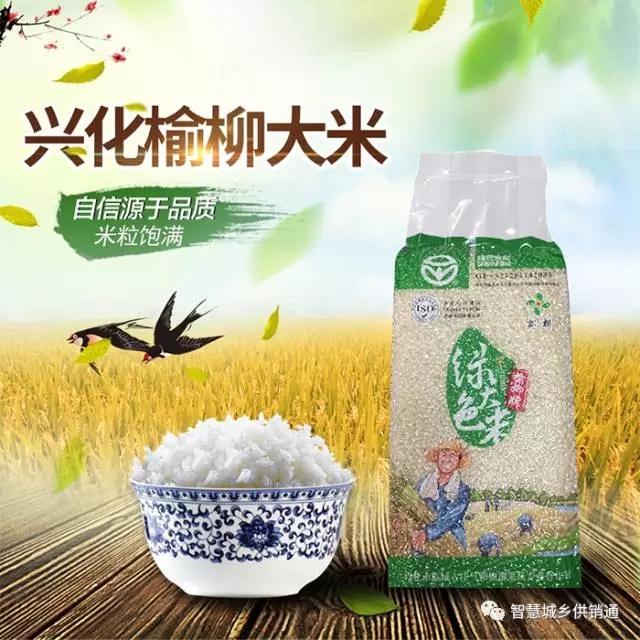 兴化特产榆柳大米